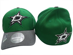 Reebok NHL Dallas Stars Playoffs FlexFit -lippis
