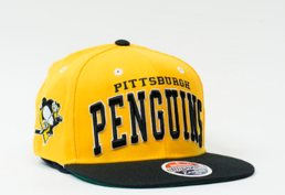 Zephyr Superstar NHL Pittsburgh Penguins Snapback cap -lippis